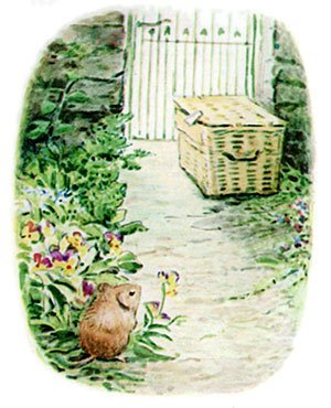 Timmy Willie was a little country mouse who went to town by mistake in a hamper.
