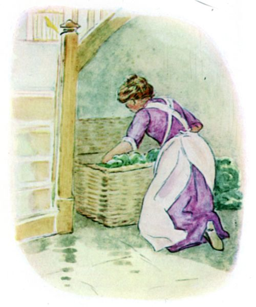 Presently the cook opened the hamper and began to unpack the vegetables.