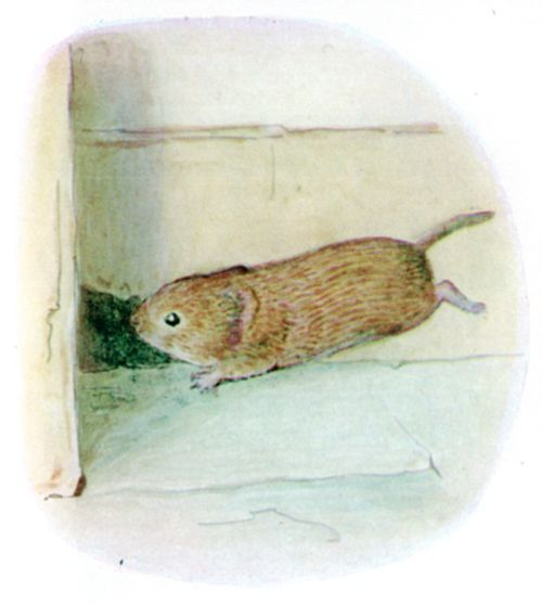 He rushed along the skirting board till he came to a little hole, and in he popped.