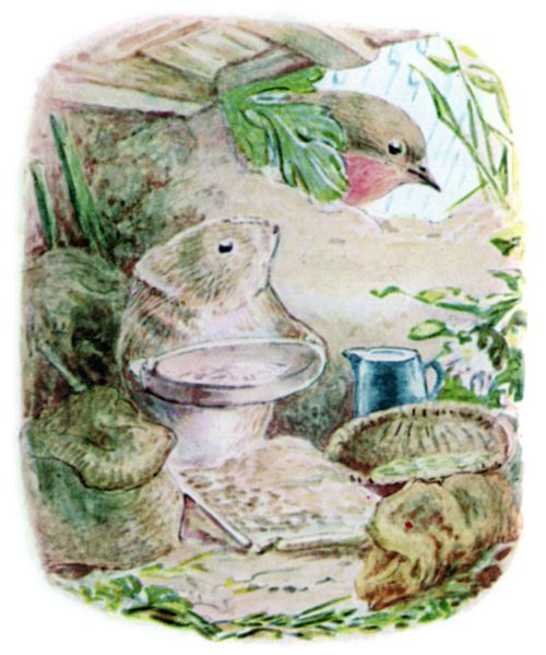 Timmy Willie longed to be at home in his peaceful nest in a sunny bank.